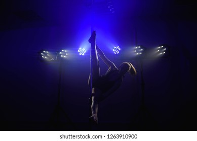 Young sexy woman exercise pole dance. Fitness