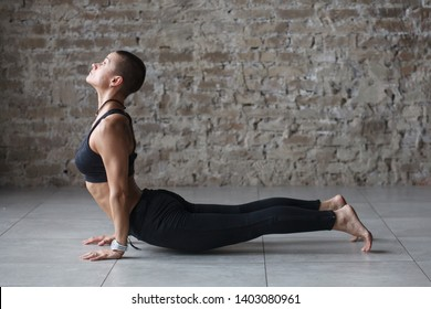 young skinhead woman doing yoga exercise - Upward-Facing Dog  indoor