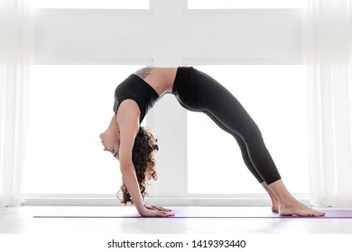 Young slender female is standing at bridge pose. Athletic brunette woman in black uniform is practicing yoga, balancing in setuasana posture at fitness studio. Healthy lifestyle concept.