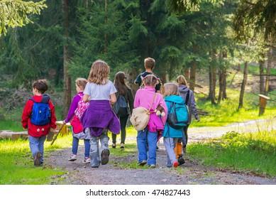 Young small caucasian kids children group walk forest wood park path tree summer back view kindergarten outdoor