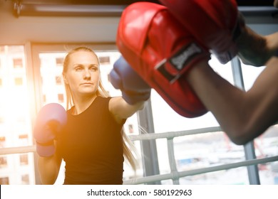 Young sportswoman engaged in boxing