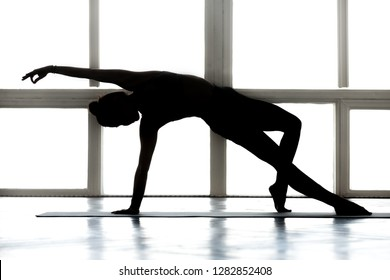 Young sporty attractive woman practicing yoga, doing Wild Thing, Flip-the-Dog exercise, Camatkarasana pose, working out, wearing sportswear, indoor full length, at yoga studio silhouette