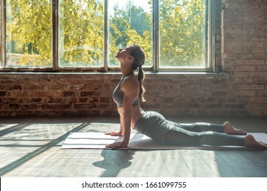Young sporty woman trainer do practice individual hatha yoga instructor training Bhujangasana pose high cobra posture prone backbend position mat modern gym fitness workout healthy lifestyle concept.