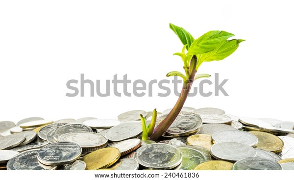Young sprout from pile of coins on white background, concept for investments or savings