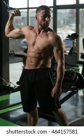 Young Strong Man In The Gym And Exercising Biceps On Machine - Muscular Athletic Bodybuilder Fitness Model Exercise Bicep