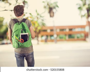 Young student man in campus