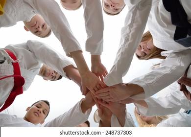 young and successful karate celebrate success