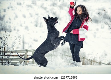 Young teen girl having fun with her great dane