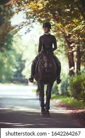 Young teenage girl equestrian riding horseback along autumn alley. Green trees frame. Multicolored vibrant outdoors vertical summertime image with filter
