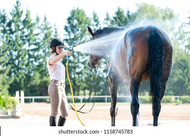 Young teenage girl equestrian washing her chestnut horse in shower. Vibrant multicolored summertime outdoors horizontal image.