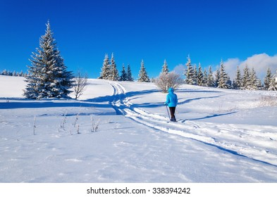 A young tourist walking path through the beautiful mountain winter landscape with trees covered with snow on a background of blue sky on a beautiful sunny day