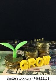 young tree growing on money above the word 'grow'