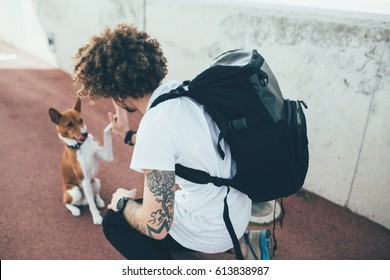 Young trendy hipster with tattoos crazy curly hair with his best friend basenji dog puppy give each other high five while the owner wears a backpack