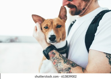 Young trendy hipster with tattoos crazy curly hair with his best friend a young and very cute basenji dog breed takes care of his pet, holds him in his hands and hugs