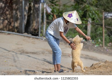 Young Vietnamese woman plays with stray dog in Sa Pa region in Vietnam.