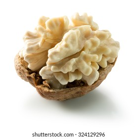young walnut isolated on the white background
