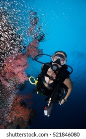 A young western looking SCUBA diver girl at the tropical coral reef with big sea fans and glassfish