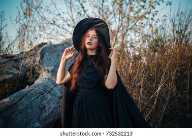 A young witch with pale skin and black lips, wearing a black hat, dress and cloak. In autumn, against the background of a fallen tree, yellow, dried grass and blue sky. halloween, magic, fantasy image