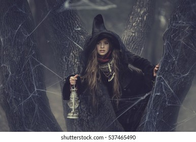 Young witch in peaked hat with a lamp in his hand on the branches of a tree