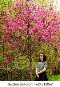 Young woman admiring a redbud tree; spring in Missouri