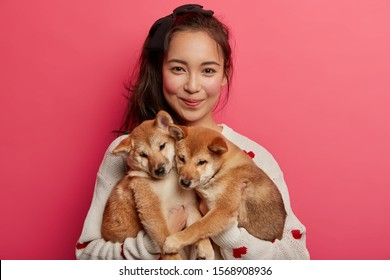 Young woman adores dogs, plays with two little shiba inu puppies, teaches them to perform some actions, has adopted nice animals, going to vet, isolated over pink background. Togetherness, affection