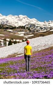 Young woman among crocuses enjoying the view of the mountains on Velika Planina / Big Pasture Plateau in Velika Planina, Slovenia