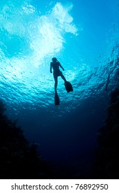 A young woman ascends from a free dive