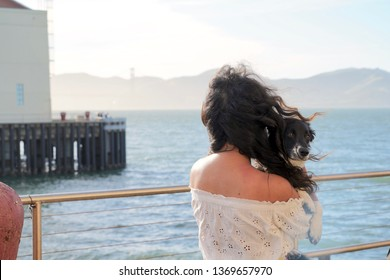 Young woman back to camera wearing summer dress, holding puppy, looking at view of ocean and bridge