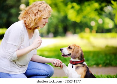 Young woman with Beagle dog in the summer park. Obedient pet with his owner practicing paw command