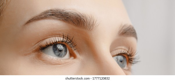 Young woman with beautiful eyebrows. Correction of brow hair.