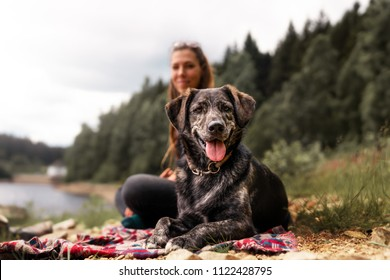 young woman and beautiful german shepherd mix dog puppy sitting together outdoor making a pause during a hike