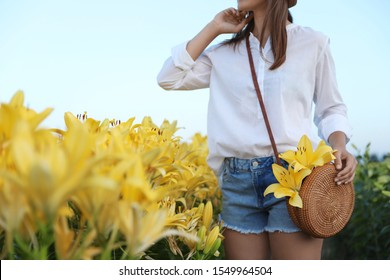 Young woman in beautiful lily field, closeup. Space for text