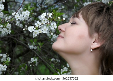 The young woman and bird cherry tree in spring