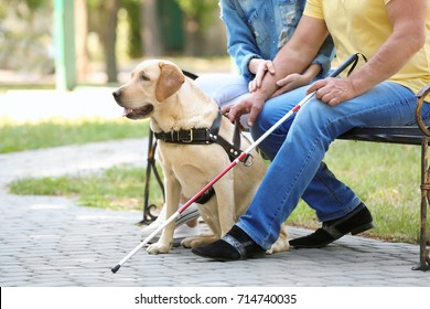 Young woman and blind man with guide dog sitting on bench in park