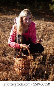 young woman with blond hair pick mushrooms and berries in forest
