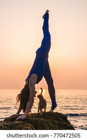 Young Woman in Bodysuit Practicing Yoga With a Cat on the Beach at Amazing Sunrise.