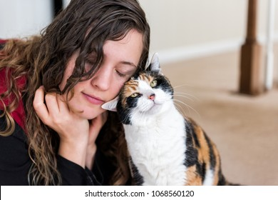 Young woman bonding with calico cat bumping rubbing bunting heads, friends friendship companion pet happy affection bonding face expression, cute adorable