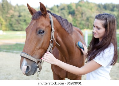 Young woman brushing a beautiful horse. Selective focus.