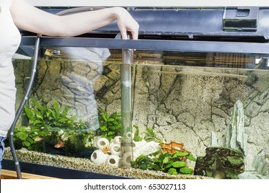 Young woman cleaning aquarium with pump at home.
