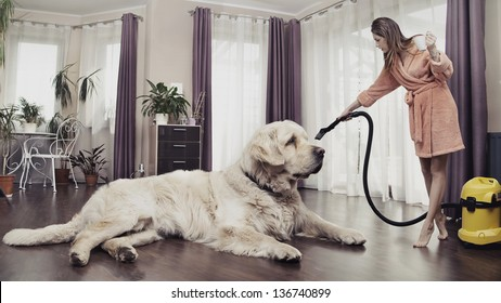 Young woman cleaning big dog