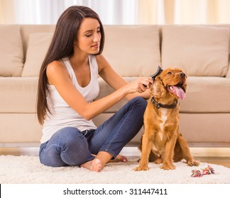 Young woman is combing her dog with a brush.