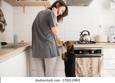 young woman cooks in the kitchen with a dog