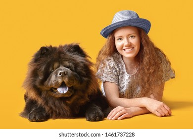 Young woman with cute Chow-Chow dog on color background