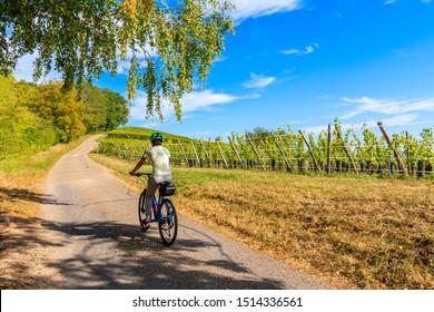 Young woman cyclist riding along Alsatian Wine Route near Riquewihr village, France