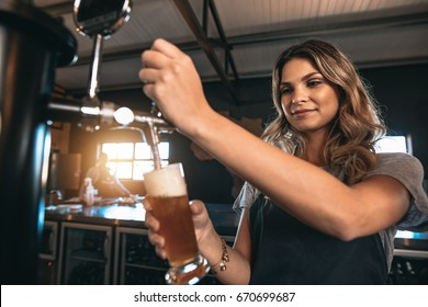 Young woman dispensing beer in a bar from metal spigots. Beautiful female bartender tapping beer in bar.