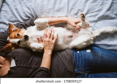 young woman and dog at home resting on bed. Love, togetherness and pets indoors