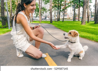 Young Woman and Dog Shaking Hands at Summer Park Alley. Human and Pets Best Friends Concept