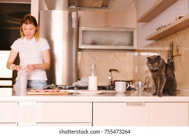 Young woman doing housework, cooking something in the kitchen. Lovely grey cat. Enjoying free time with pet. The British short-hair sitting on the table