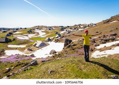 Young woman is enjoying the view of Mountain huts or houses on idyllic hill Velika Planina / Big Pasture Plateau with open arms in spring with crocuses in Velika Planina, Slovenia.