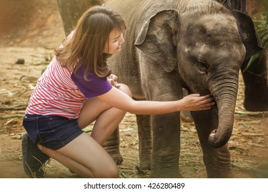 Young woman feeding banana to the baby elephant.
